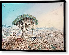 Quiver Tree And Ostriches Acrylic Print