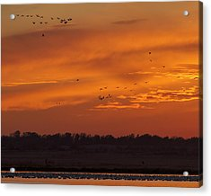 Quivira Sunset 1 Acrylic Print by Rob Graham