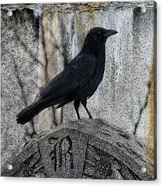 R Is For Raven Acrylic Print