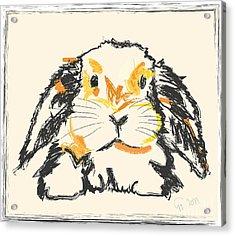 Rabbit Jon Acrylic Print