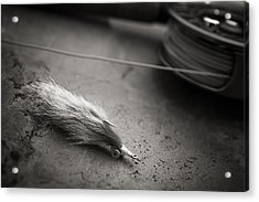 Rabbit Strip Fly Acrylic Print by Chad Simcox