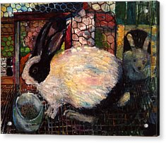 Rabbit Talk Acrylic Print