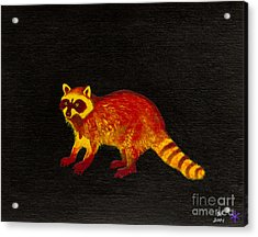 Raccoon Acrylic Print by Stefanie Forck