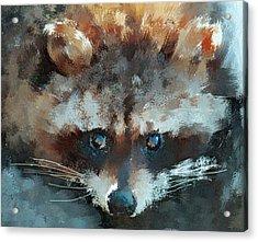 Raccoon Acrylic Print by Yury Malkov