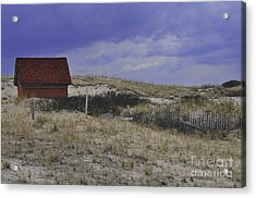 Race Point Light Shed Acrylic Print by Catherine Reusch Daley