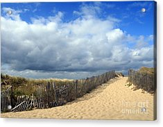 Race Point Acrylic Print by Paula Guttilla