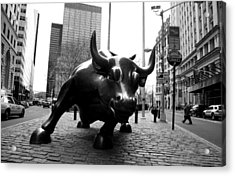 Raging Bull Acrylic Print by Gilberto Gutierrez