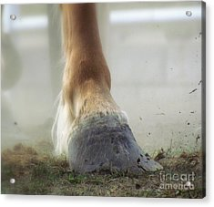 Acrylic Print featuring the photograph Life Racing by France Laliberte