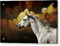 Racing The Moon Acrylic Print