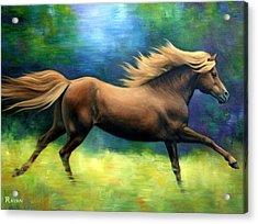 Racing  The Wind Acrylic Print