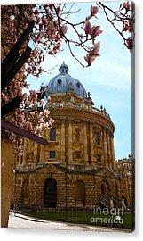 Radcliffe Camera Bodleian Library Oxford  Acrylic Print