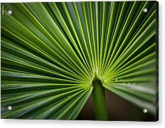 Radial Greens Acrylic Print