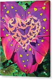 Radiant Butterfly Heart Acrylic Print by Alixandra Mullins