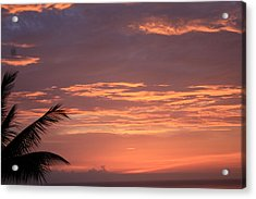 Acrylic Print featuring the photograph Radiant Sunset 2 by Karen Nicholson