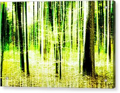 Radiation Forest Acrylic Print