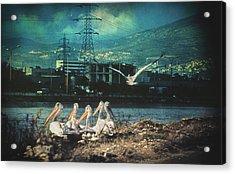 Radioactive Days Acrylic Print