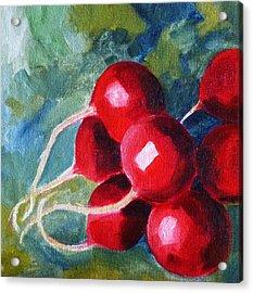 Radish Acrylic Print by Nancy Merkle