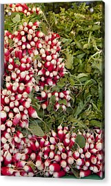 Radishes Acrylic Print by Art Ferrier
