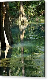 Radium Springs Creek In The Summertime Acrylic Print by Kim Pate