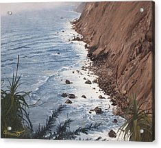 Ragged Point California Acrylic Print by Barbara Barber