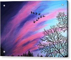 Raging Sky And Canada Geese Acrylic Print by Barbara Griffin