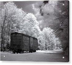 Rail Car Acrylic Print by Terry Reynoldson