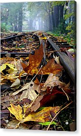 Rails And Leaves Acrylic Print