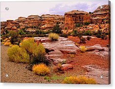 Rain At The Needles District 2 Acrylic Print by Marty Koch