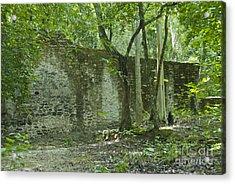 Rain Forest Jungle And Ruins At Calakmul Acrylic Print