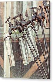 Rain Guages Acrylic Print by Tom Gowanlock