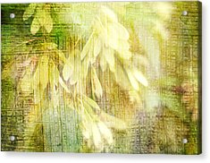 Rain On Leaves Acrylic Print by Suzanne Powers