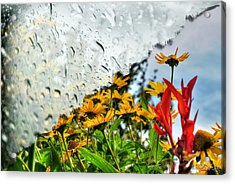 Rain Rain Go Away... Acrylic Print by Michael Frank Jr