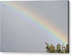 Rainbow After The Rain Acrylic Print by Barbara Griffin