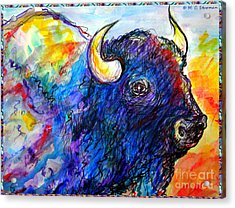 Rainbow Buffalo Acrylic Print by M C Sturman