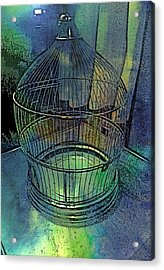 Rainbow Caged Acrylic Print by ARTography by Pamela Smale Williams