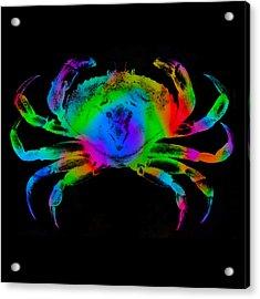 Rainbow Crab Acrylic Print by David Blank