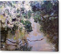 Rainbow Creek Acrylic Print by Mary Lynne Powers