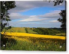 Rainbow Fields Acrylic Print by Theresa Selley