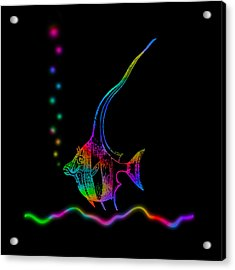 Rainbow Fish - Chaetodon Besantii Acrylic Print by David Blank