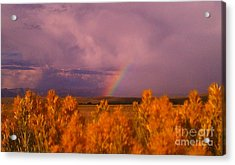 Acrylic Print featuring the photograph Rainbow In The Plains by Chris Tarpening