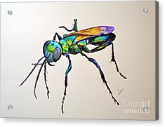 Rainbow Insect Acrylic Print by Dion Dior