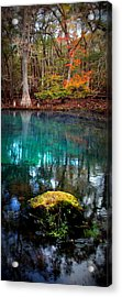 Rainbow Of Colors Manatee Springs1 Acrylic Print