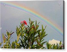 Rainbow Over Flower Acrylic Print