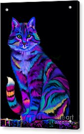 Rainbow Painted Tiger Cat Acrylic Print by Nick Gustafson
