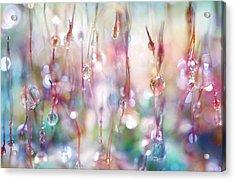 Rainbow Rain Catcher Acrylic Print