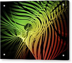 Rainbow Ribs Acrylic Print by Richard J Cassato