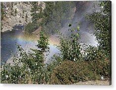 Rainbow Acrylic Print by Shelley Ewer