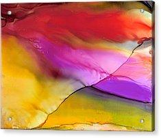 Rainbow Silk Wave Acrylic Print by Alexis Bonavitacola