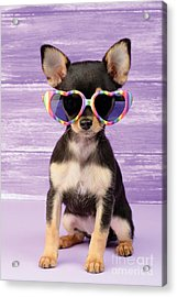Rainbow Sunglasses Acrylic Print by Greg Cuddiford