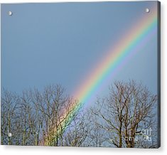 Acrylic Print featuring the photograph Rainbow Through The Tree Tops by Kristen Fox